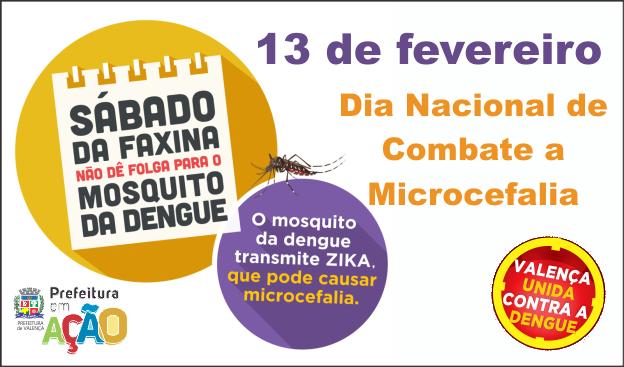 sabado-microcefalia-SITE